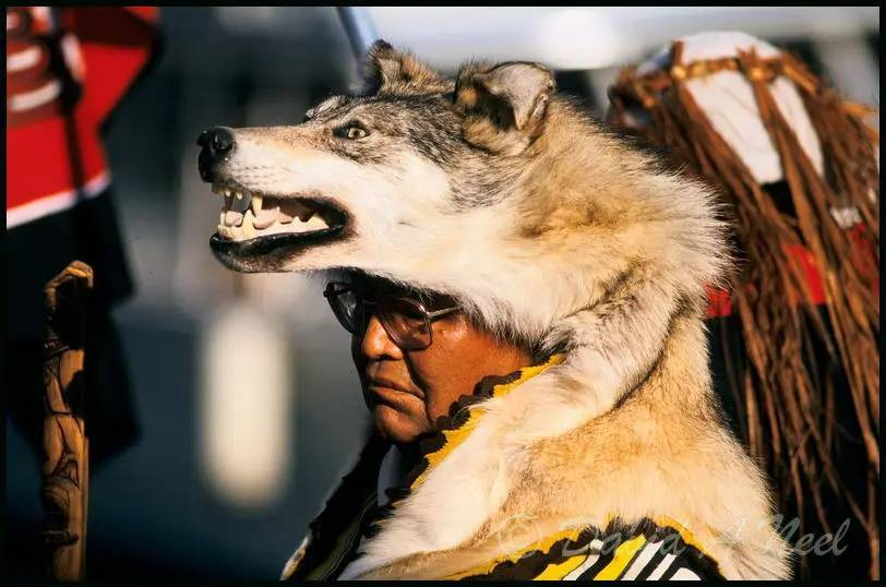 A Niss'ga chief from the Wolf clan.
